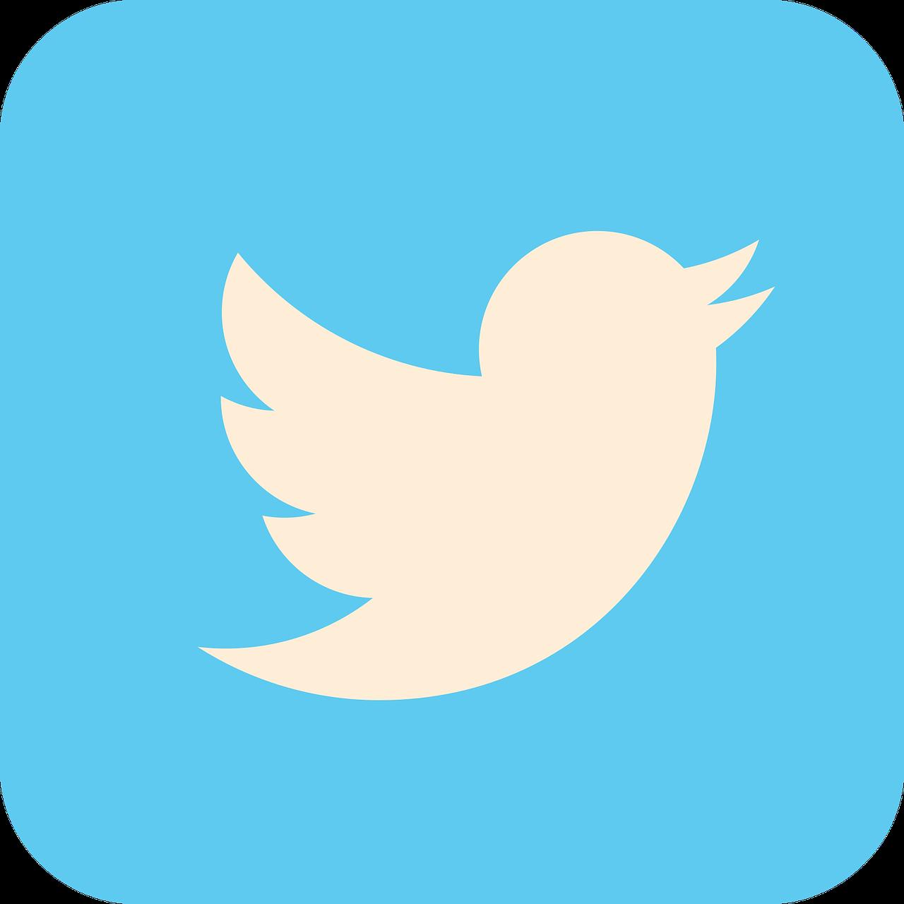 【知識のいらない哲学入門】4:ツイッターから始める哲学