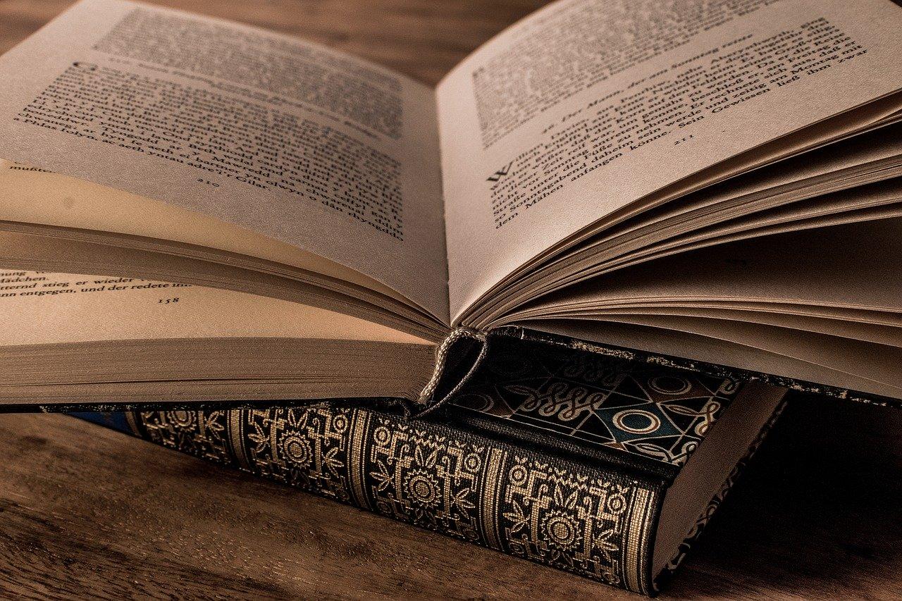 【無料で読める】構造主義を学ぶ人におすすめの哲学書・参考文献3選